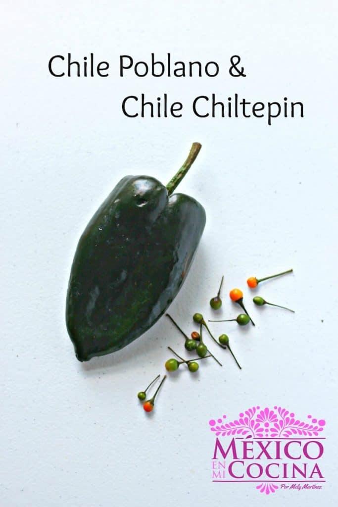 chile poblano y piquin │chiles frescos mexicanos