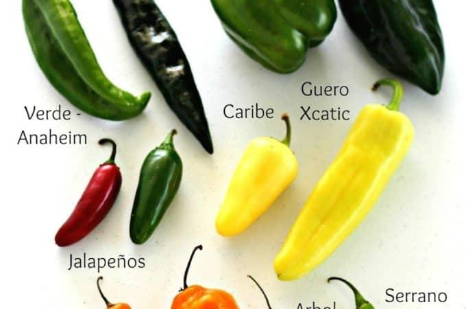 chiles frescos mexicanos